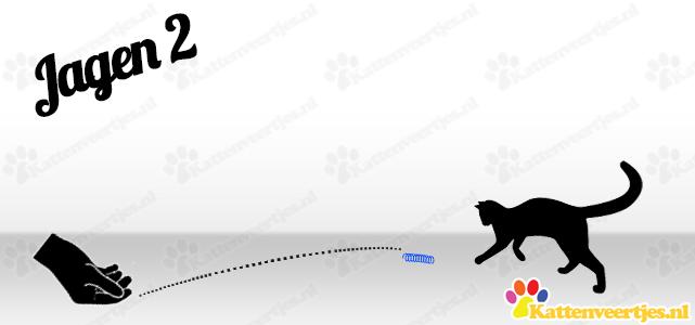 Kattenveertjes_na-jagen2