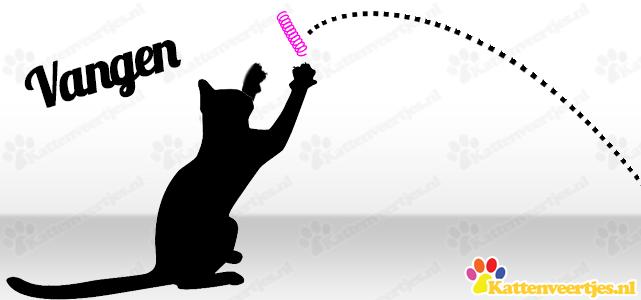 Kattenveertjes vangen