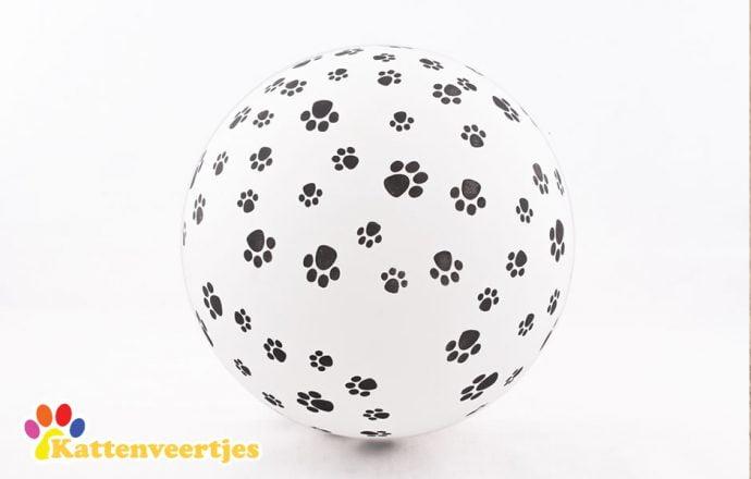 Ballonnen met kattenpootprint