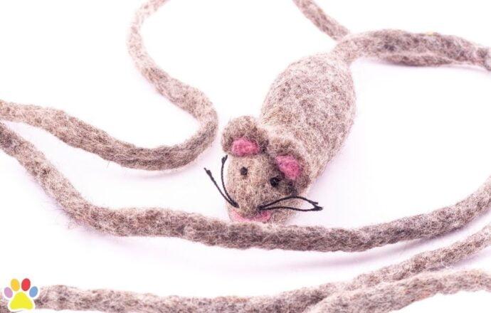 Wollen muis lange staart grijs2