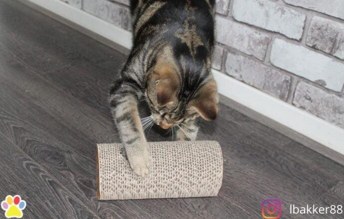 Happy pet claw 'n' roll krab speelgoed met catnip