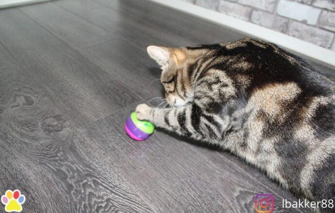 Trixie Cat Activity Voerbal 6CM Verrijking