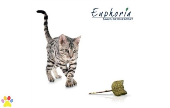 Croci Euphoria Stick Catnip Kattenkop 14 cm
