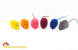 Kattenveertjes-piep-muis