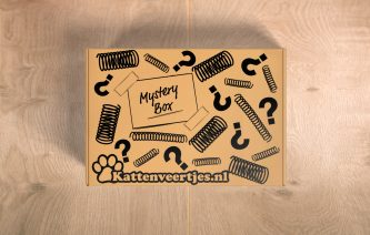 Mysterybox_hout